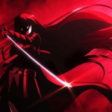 http___wall.anonforge.com_wp-content_uploads_Anime_AkameGaKill_a_sword-girl-akame-ga-kill-hd-picture-wallpaper