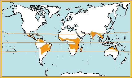 mapa_climatropicalhumido.png